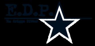 E.D.P. Unternehmensgesellschaft